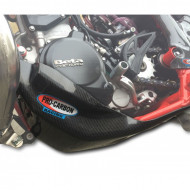 PRO-CARBON RACING Beta Bashplate - RR 250/300 2013-19